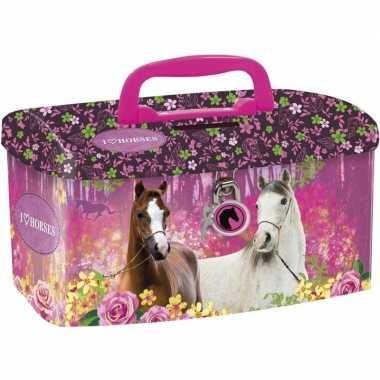 Paarden spaarpot geldkistje