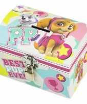 Paw patrol mint roze kinder spaarpot geldkistje 14 x 10 cm